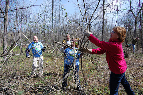 SC Johnson volunteers cleaning up River Bend Nature Center