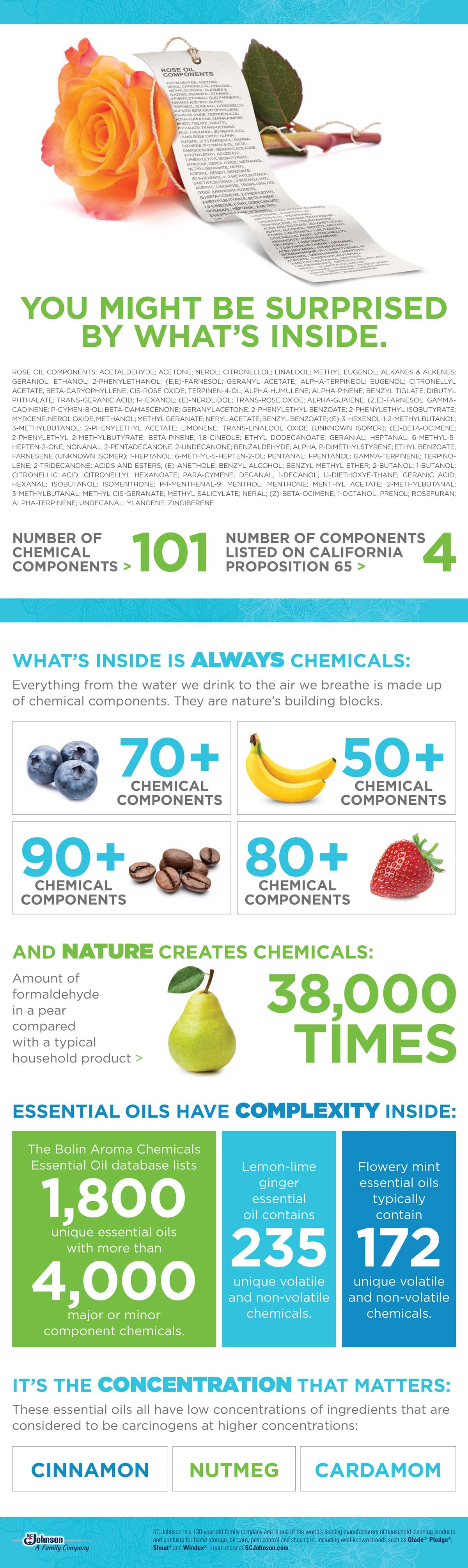 An ingredient transparency infographic from SC Johnson