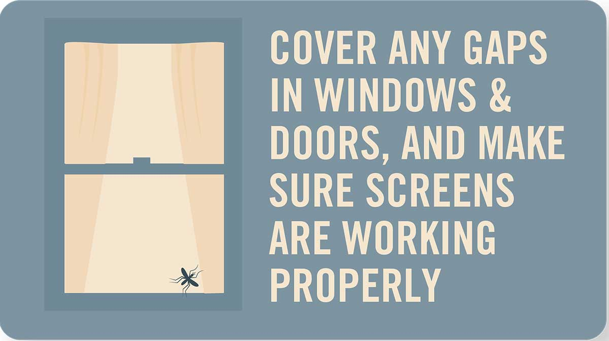 Mosquito tip: Cover gaps in windows and doors, make sure screens work properly