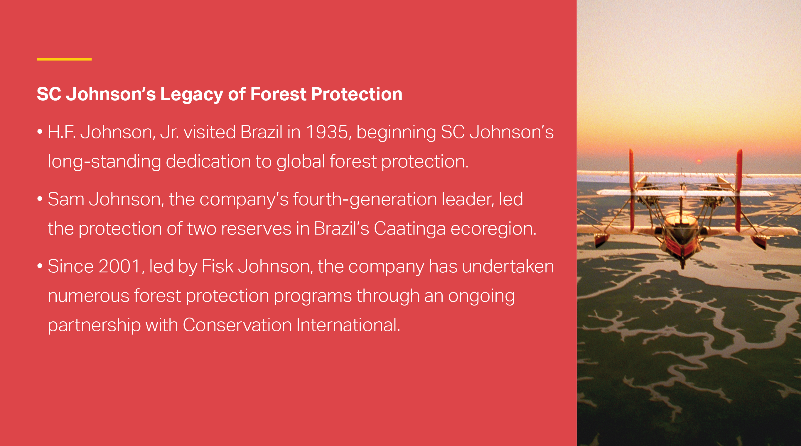 infographic tile: rainforest and river. Text reads: SC Johnson working with Conservation International had conserved more than 100,000 acres of tropical forest.
