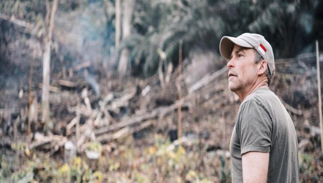 SC Johnson Chairman and CEO looks at the devastation of illegal deforestation