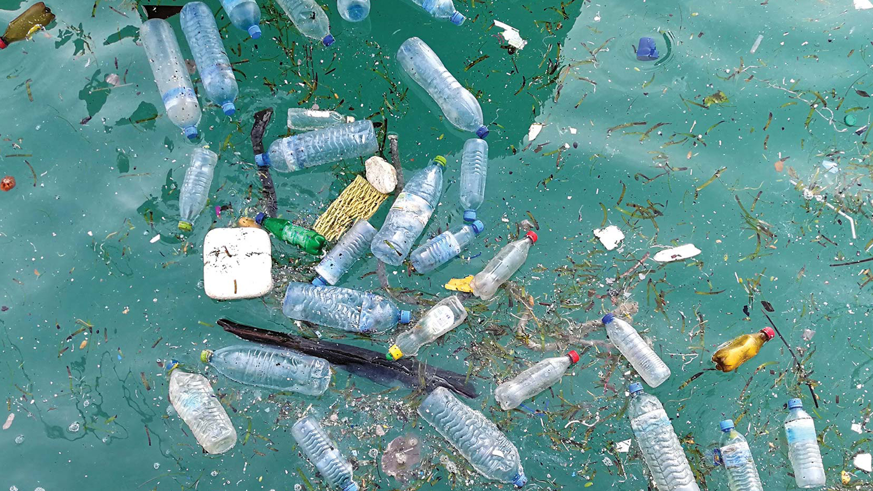 plastic bottles and garbage in the ocean