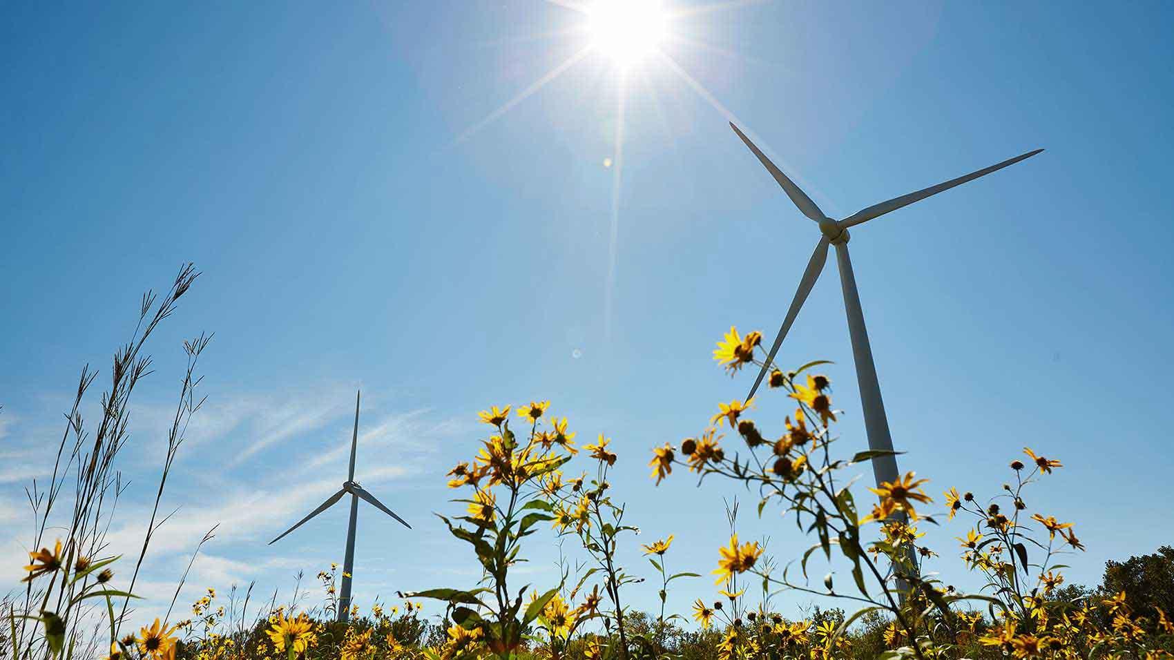SCジョンソン社は再生可能な風力エネルギーを活用