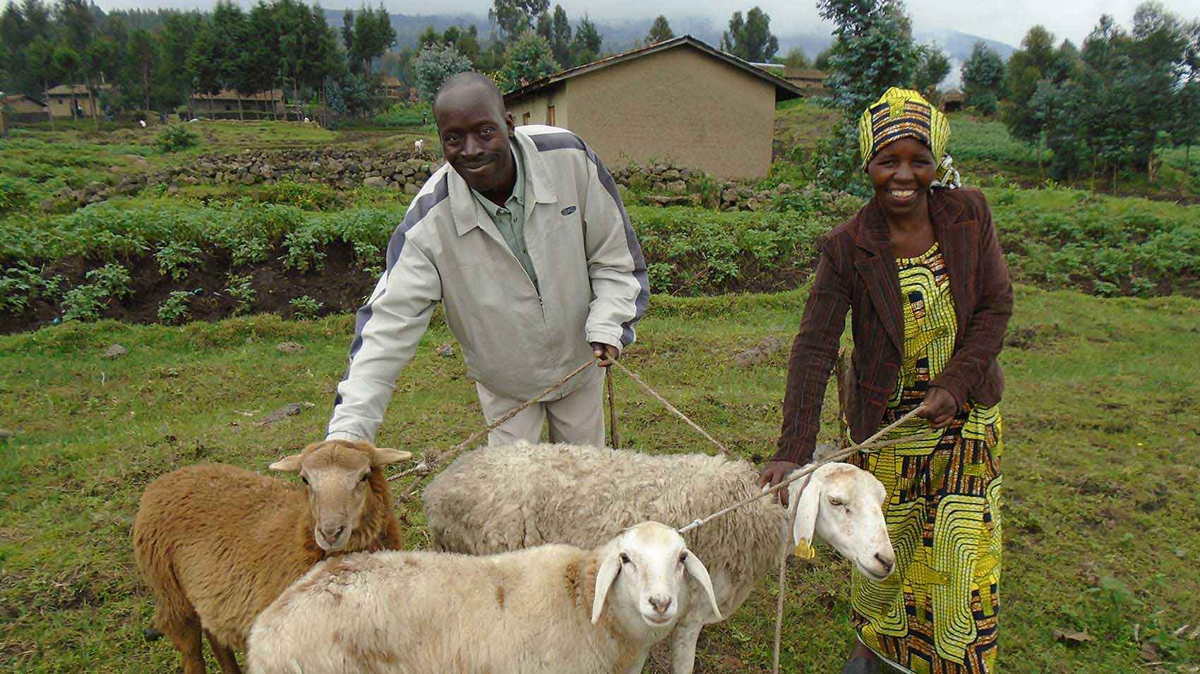 Rural farmers helped by the Pyrethrum farming cooperative programme