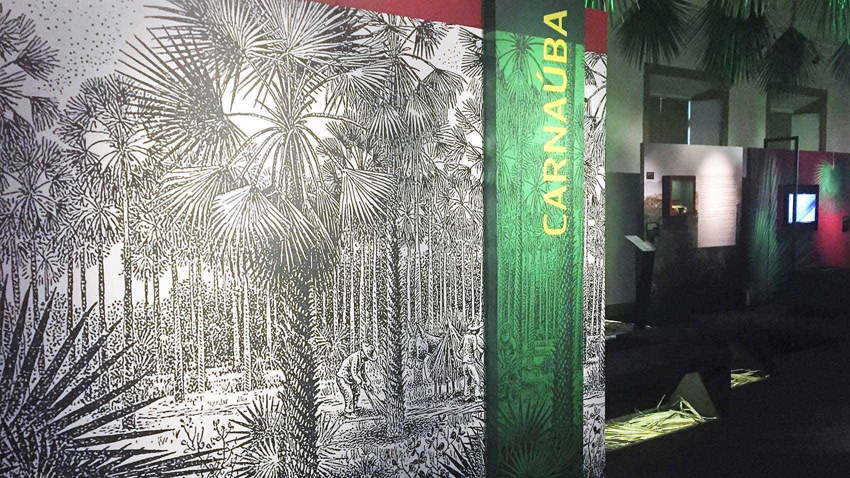"Das Exponat ""Carnaúba: Tree of Life"" in der brasilianischen Stadt Fortaleza"