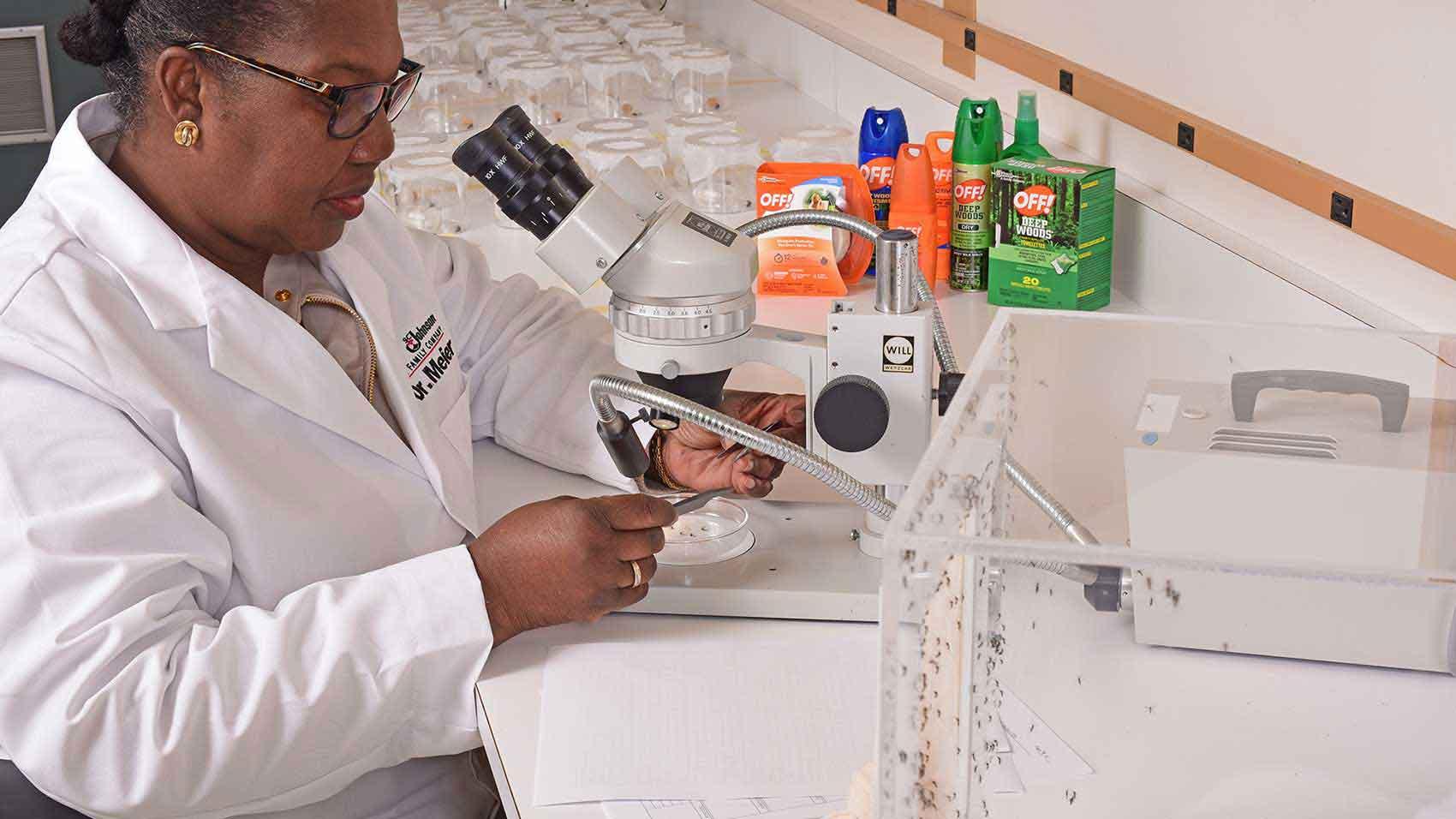 Pesquisa científica de insetos para ajudar a proteger famílias de doenças transmitidas por mosquitos.