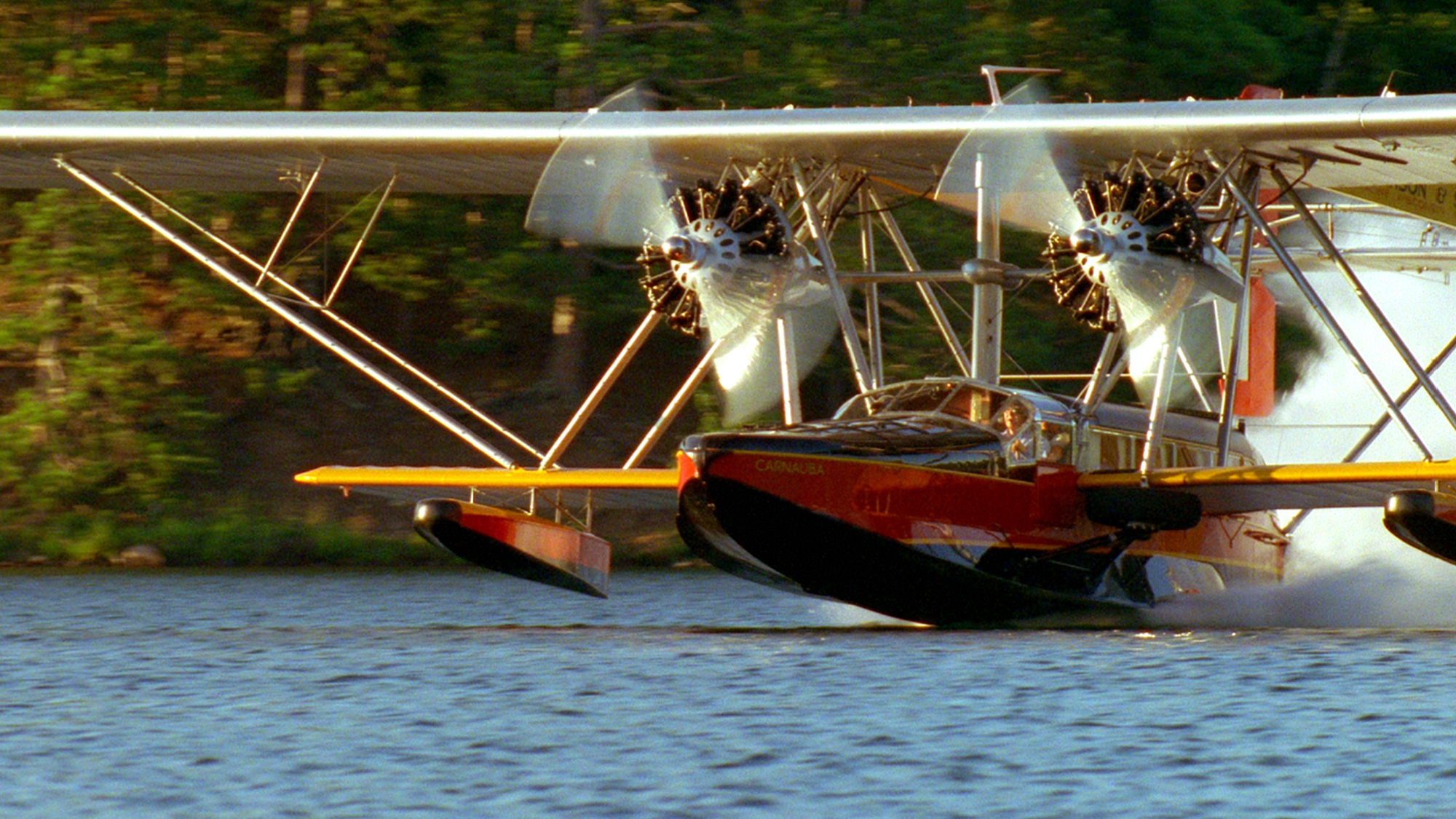 Carnauba Landing on Water