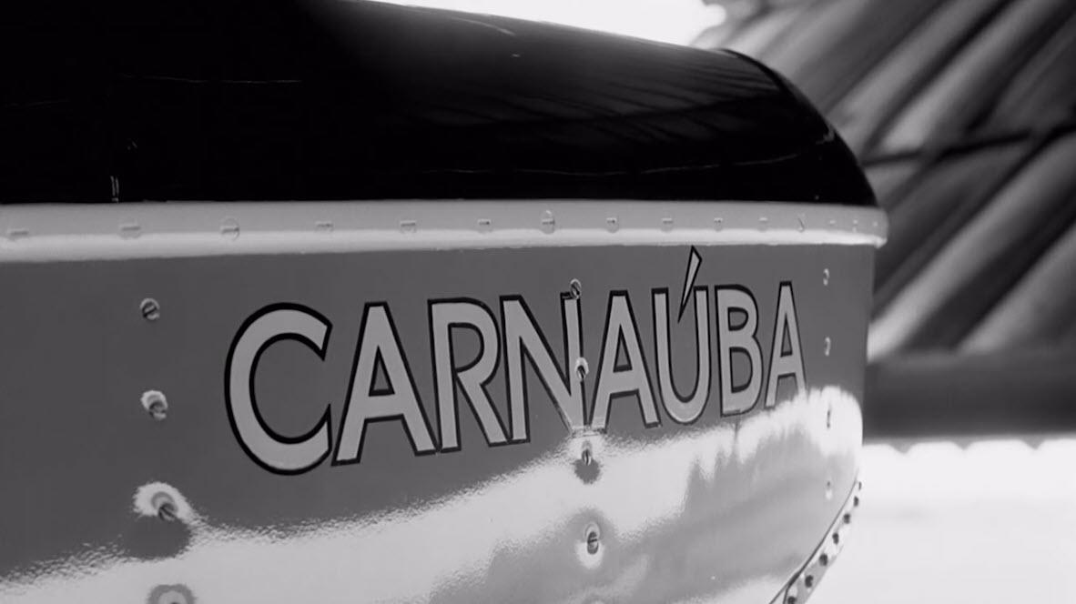 A scene from Sam Johnson's film Carnauba: A Son's Memoir