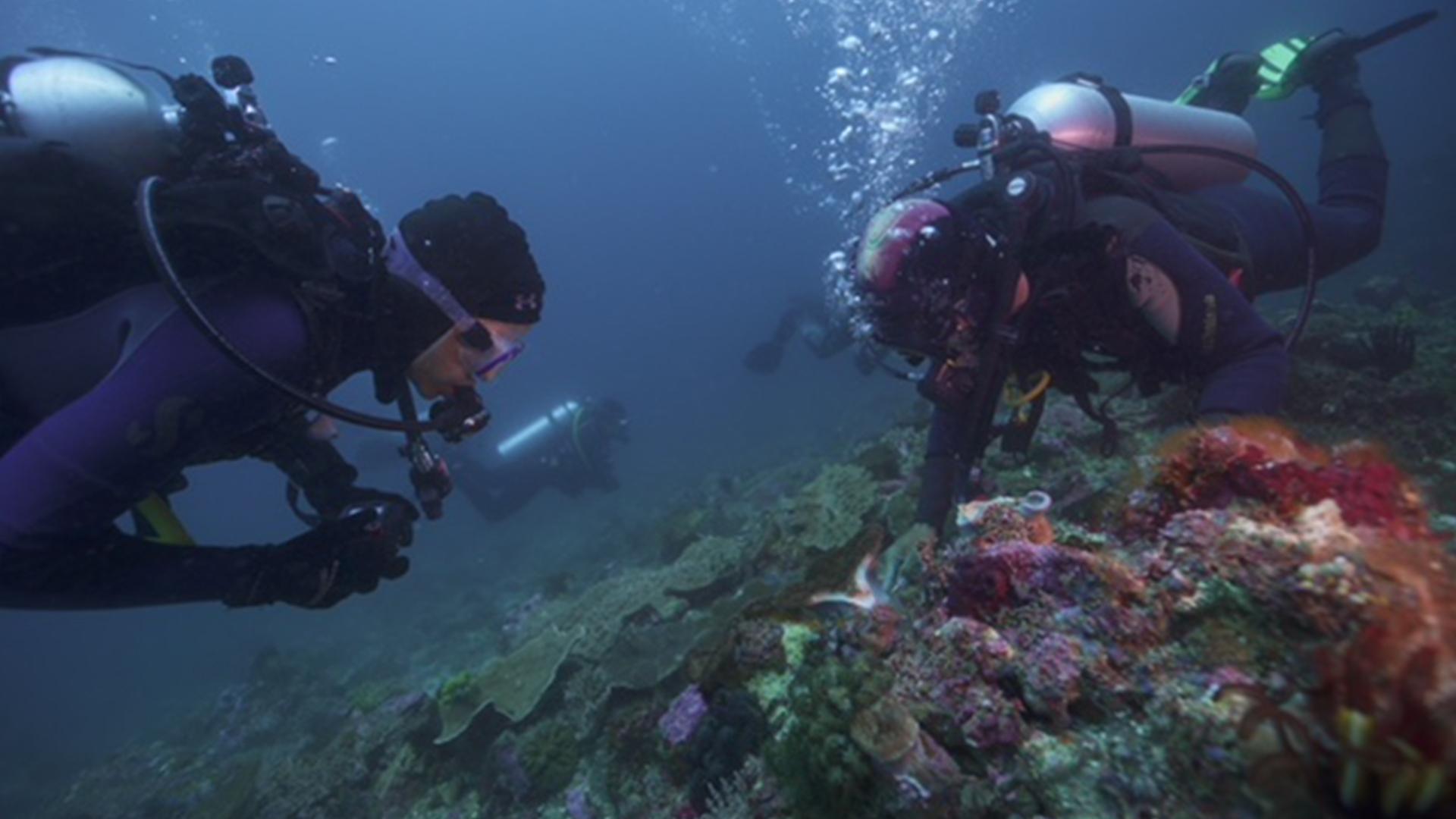 Fisk Johnson Looking at Microplastics